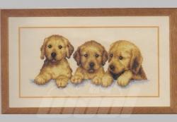 Stickpackung: Junge Labradors